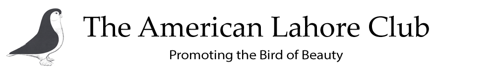 The American Lahore Club